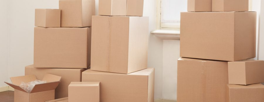 Cardboard boxes in apartment on moving day