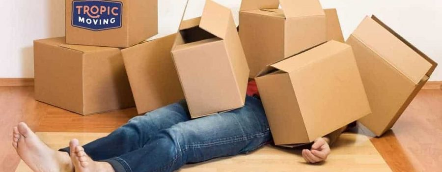 woman overwhelmed by boxes